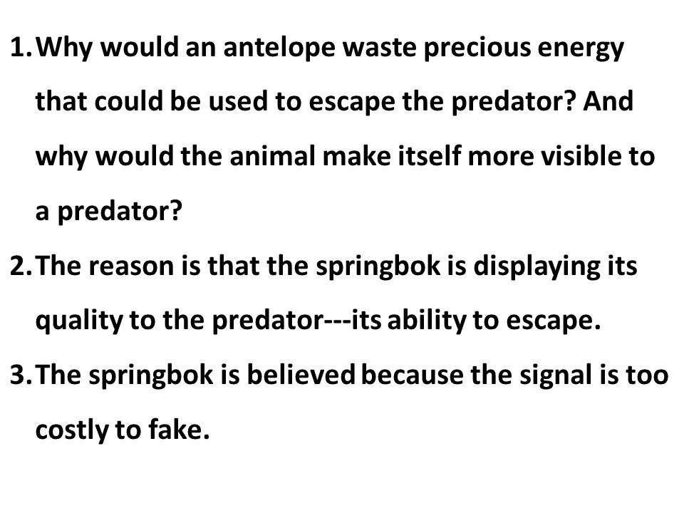 Why would an antelope waste precious energy that could be used to escape the predator And why would the animal make itself more visible to a predator