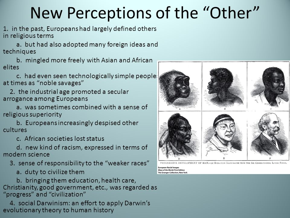 New Perceptions of the Other