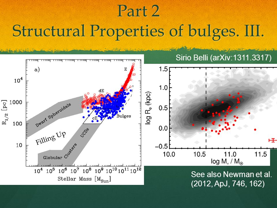 Part 2 Structural Properties of bulges. IV.