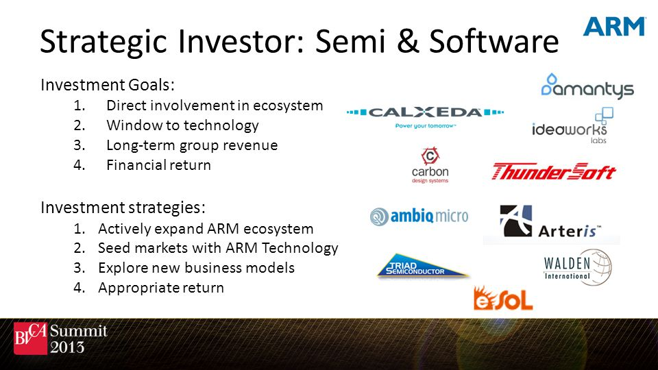 Strategic Investor: Semi & Software
