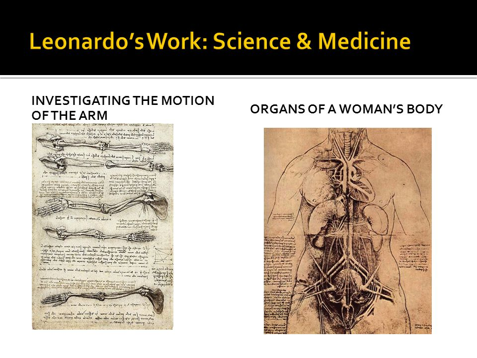 Leonardo's Work: Science & Medicine