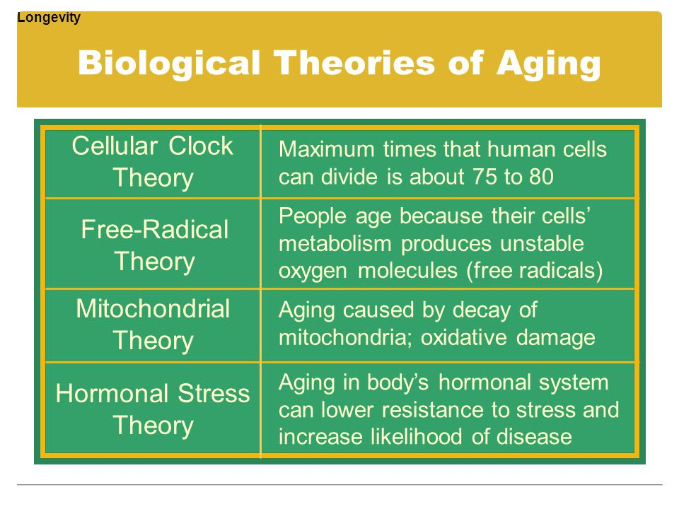 Biological Theories of Aging