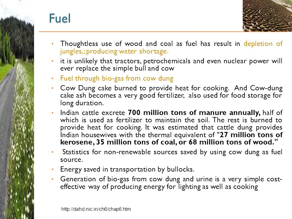 Fuel Thoughtless use of wood and coal as fuel has result in depletion of jungles,; producing water shortage.