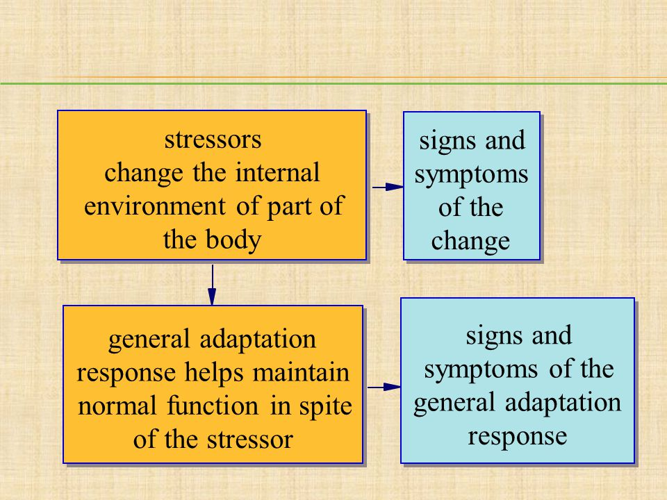 stressors signs and. change the internal. symptoms. environment of part of. of the. the body. change.