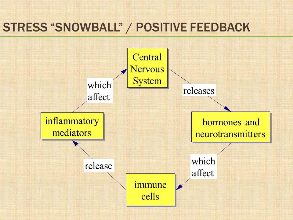 Stress snowball / positive feedback