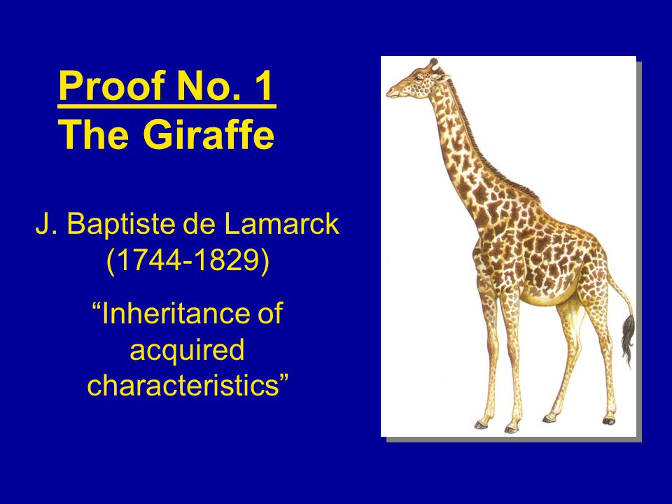 Proof No. 1 The Giraffe J. Baptiste de Lamarck (1744-1829)