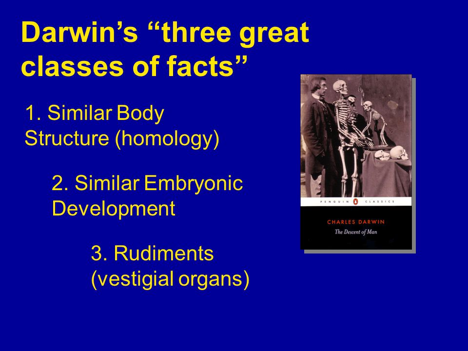 Darwin's three great classes of facts