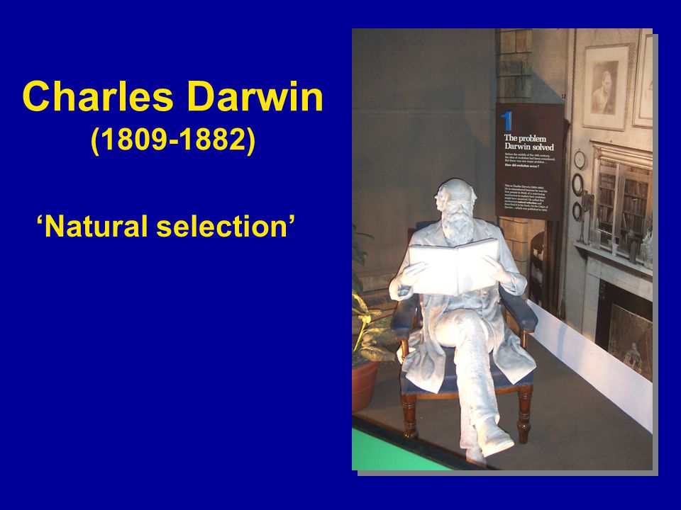 Charles Darwin (1809-1882) 'Natural selection'