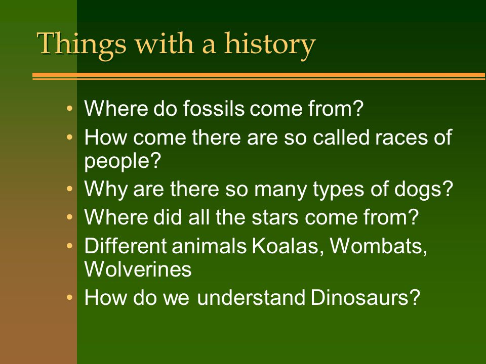 Things with a history Where do fossils come from
