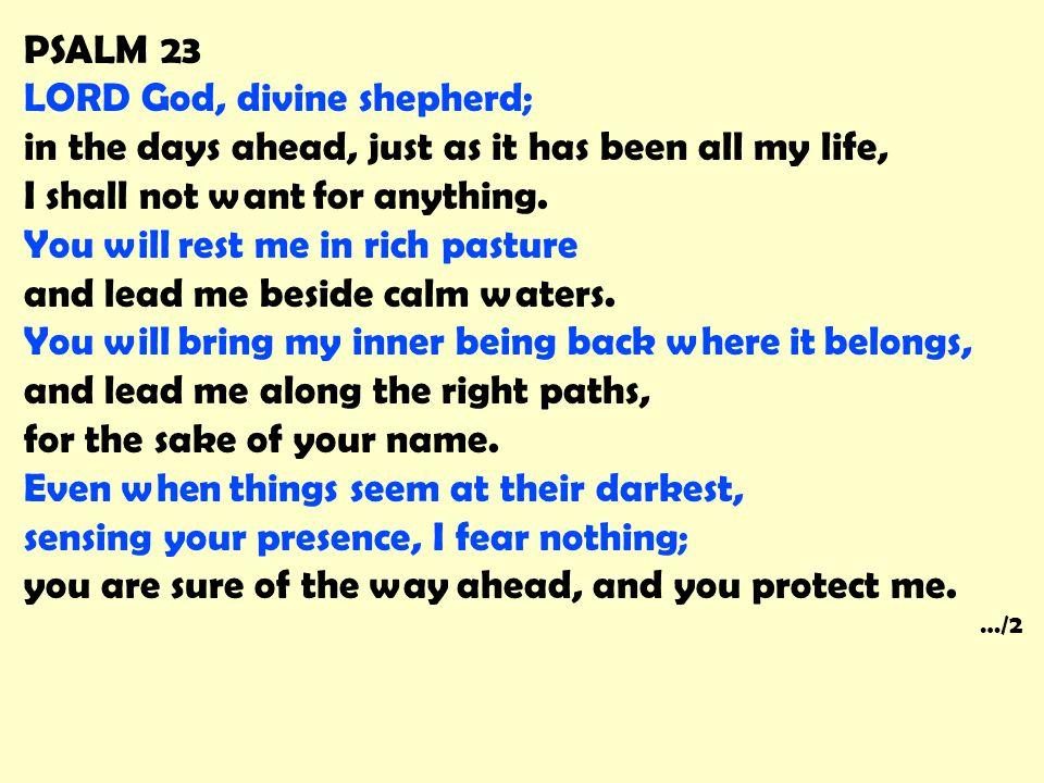 LORD God, divine shepherd;