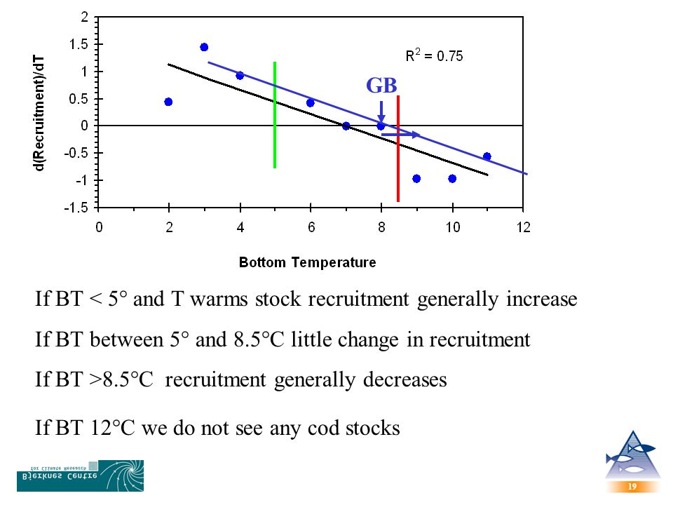 GB If BT < 5° and T warms stock recruitment generally increase. If BT between 5° and 8.5°C little change in recruitment.