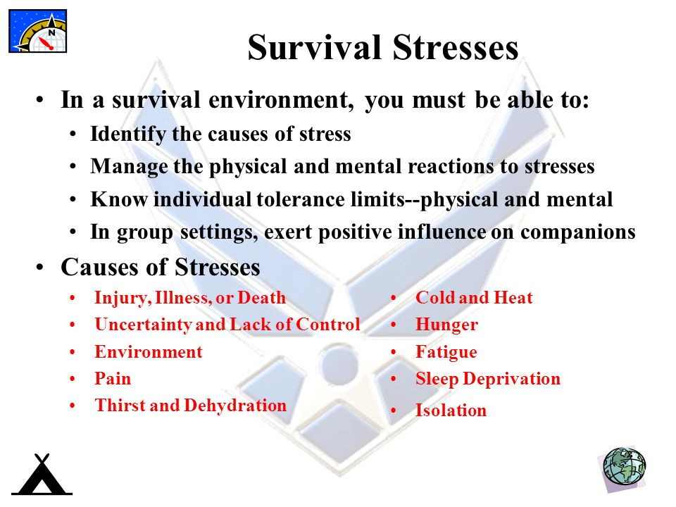 Survival Stresses In a survival environment, you must be able to: