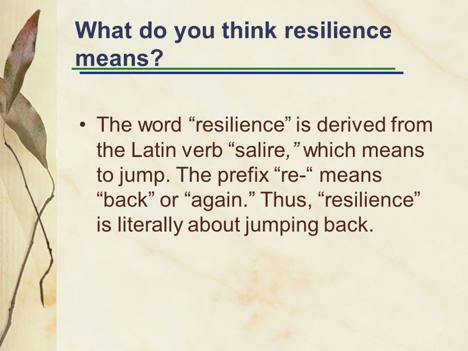 What do you think resilience means