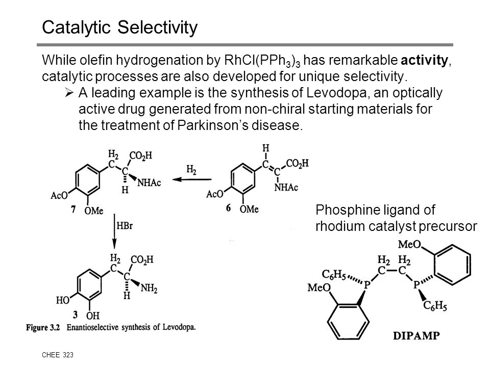 Catalytic Selectivity