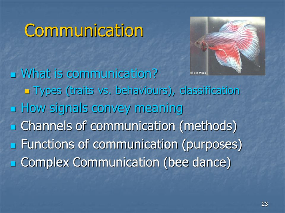 Communication What is communication How signals convey meaning