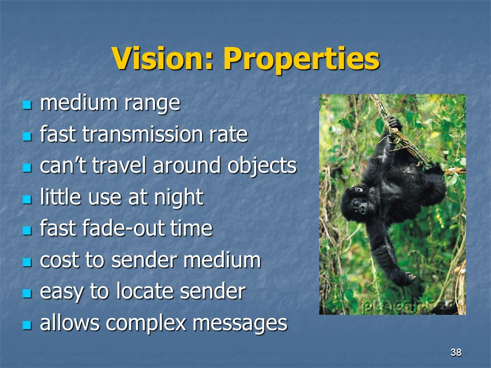 Vision: Properties medium range fast transmission rate