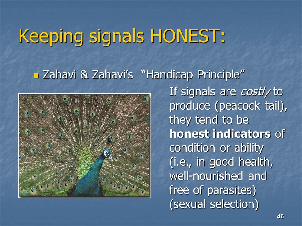Keeping signals HONEST: