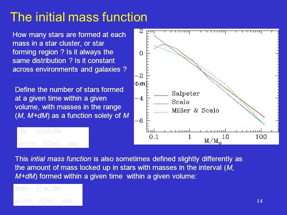 The initial mass function