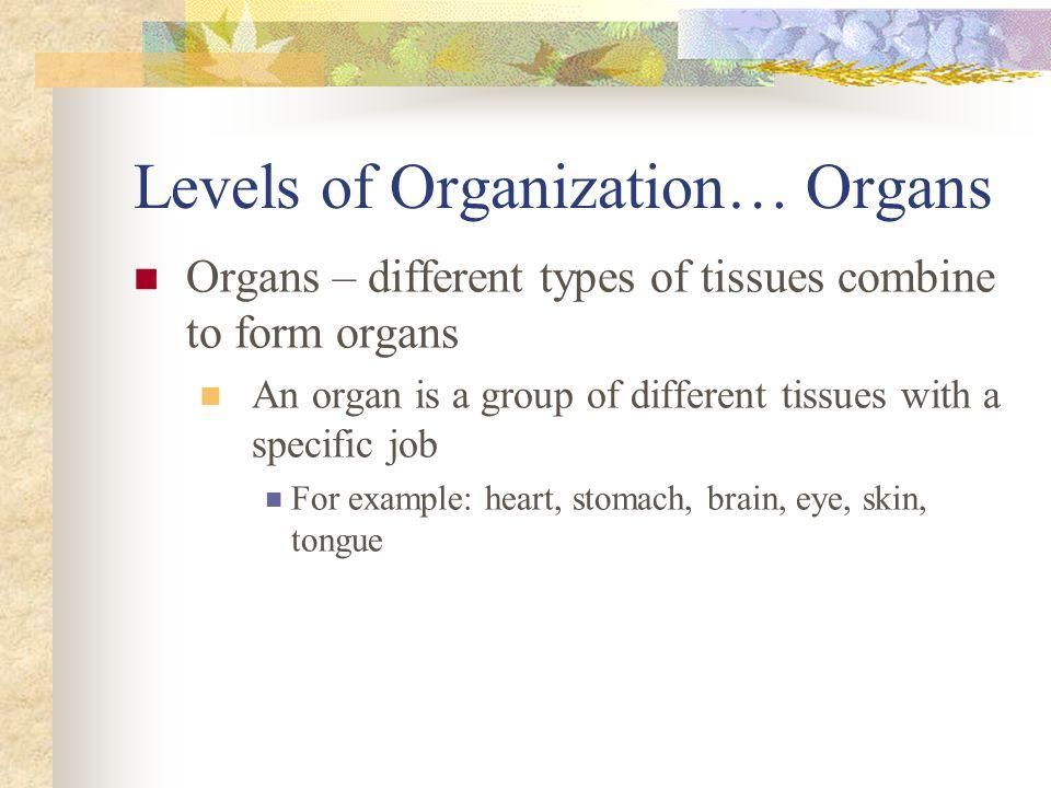 Levels of Organization… Organs