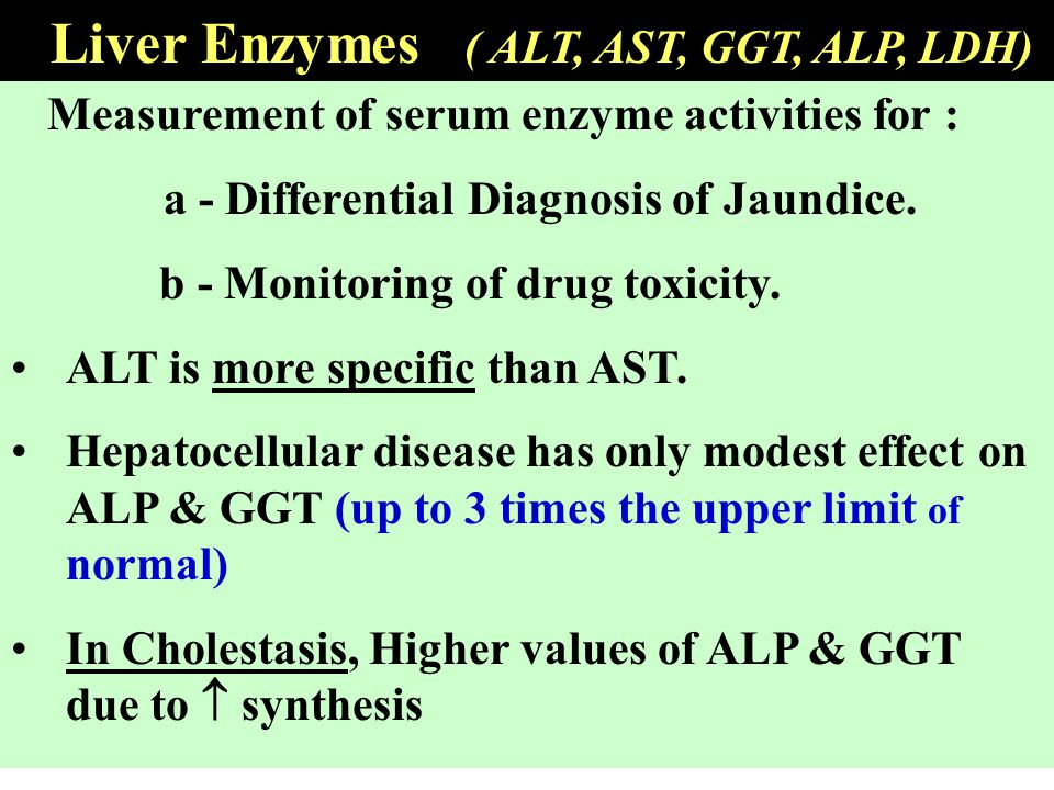 Liver Enzymes ( ALT, AST, GGT, ALP, LDH)