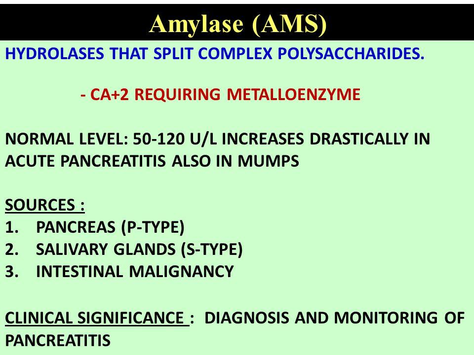 Amylase (AMS) HYDROLASES THAT SPLIT COMPLEX POLYSACCHARIDES.