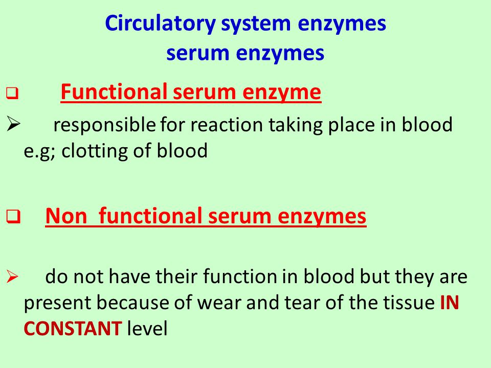 Circulatory system enzymes serum enzymes