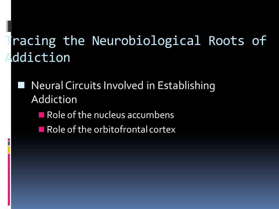 Tracing the Neurobiological Roots of Addiction