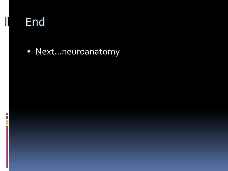 End Next…neuroanatomy