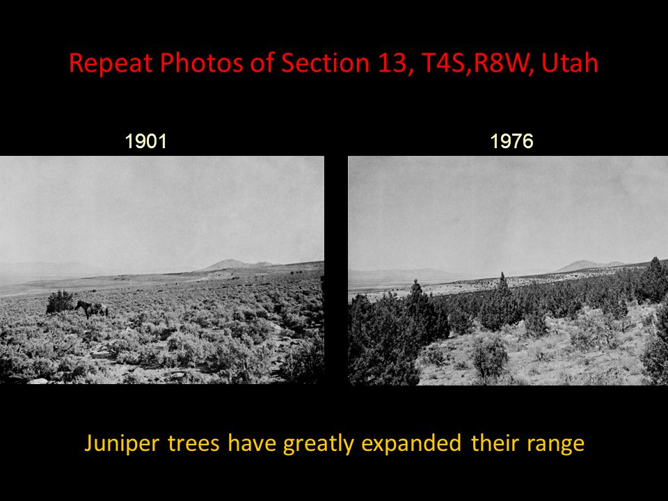Repeat Photos of Section 13, T4S,R8W, Utah