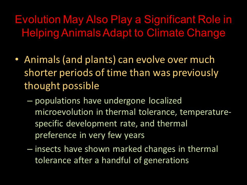 Evolution May Also Play a Significant Role in Helping Animals Adapt to Climate Change