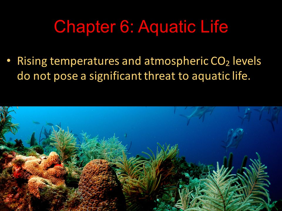 Chapter 6: Aquatic Life Rising temperatures and atmospheric CO2 levels do not pose a significant threat to aquatic life.