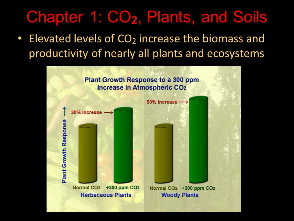 Chapter 1: CO2, Plants, and Soils