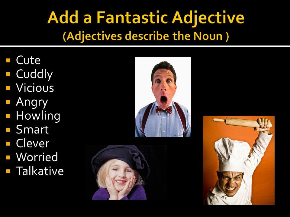Add a Fantastic Adjective (Adjectives describe the Noun )
