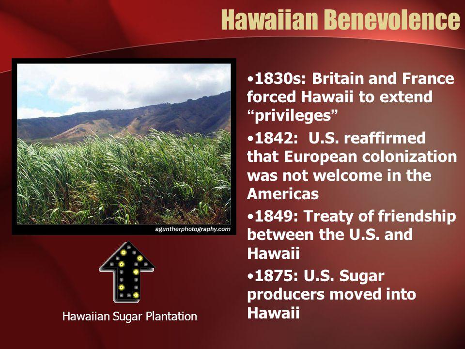 Hawaiian Sugar Plantation