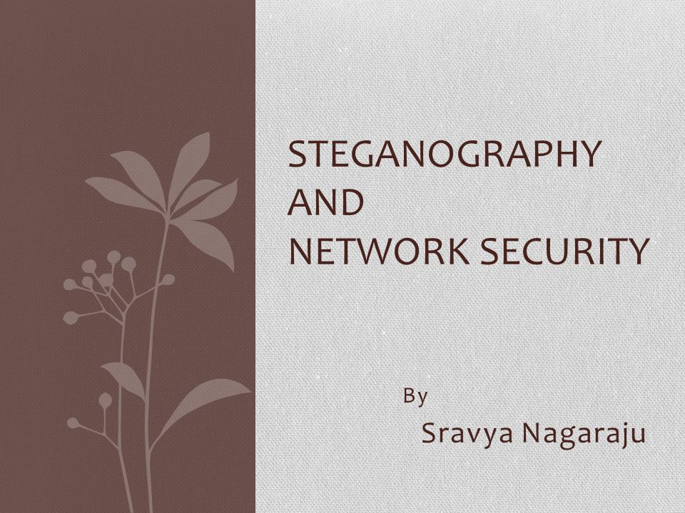 Steganography and Network Security