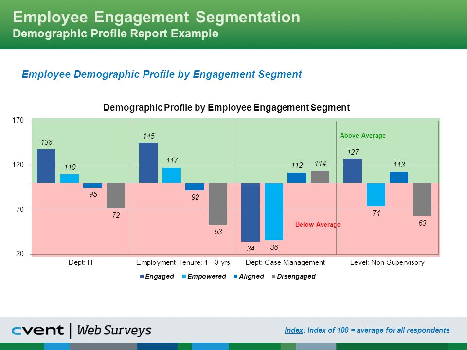 Employee Engagement Segmentation Demographic Profile Report Example
