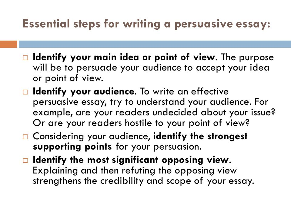 Steps in writing a persuasive essay