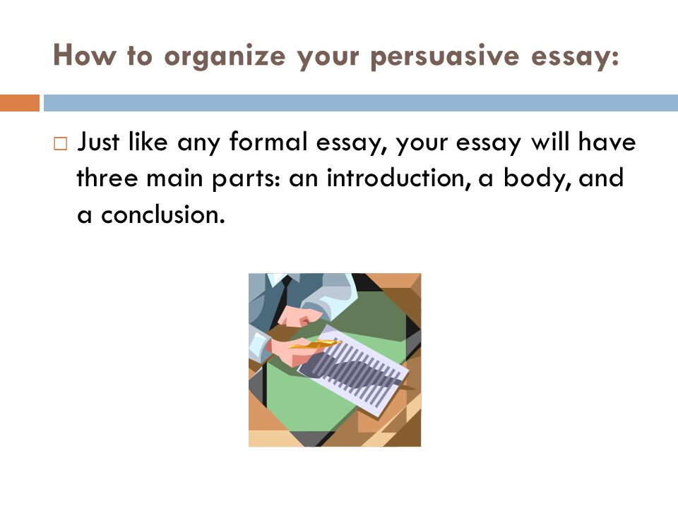 How to organize your persuasive essay: