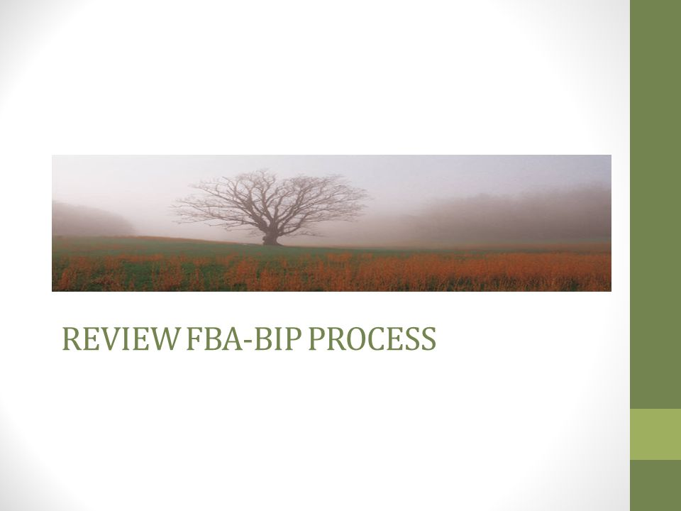 Review FBA-BIP Process
