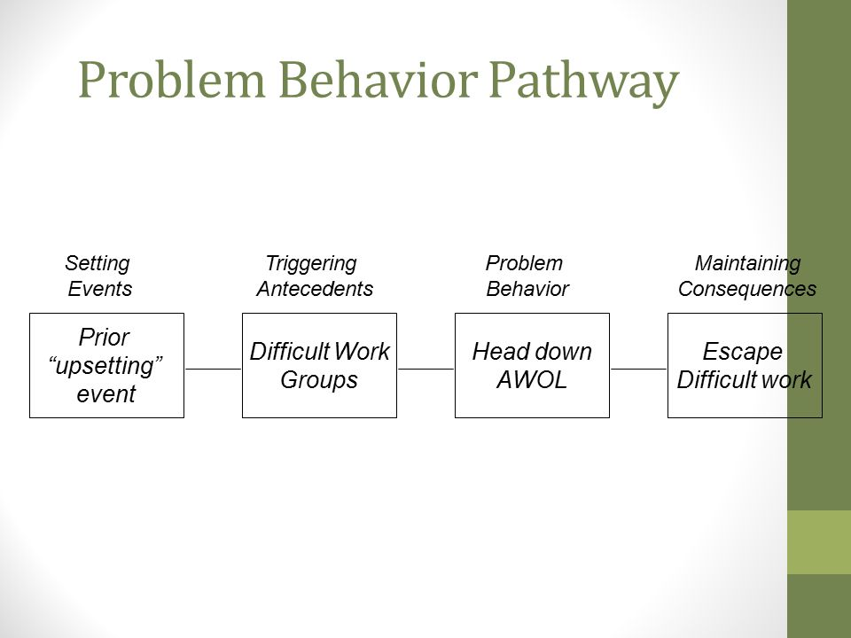 Problem Behavior Pathway