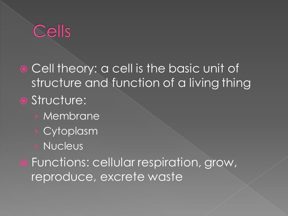 Cells Cell theory: a cell is the basic unit of structure and function of a living thing. Structure: