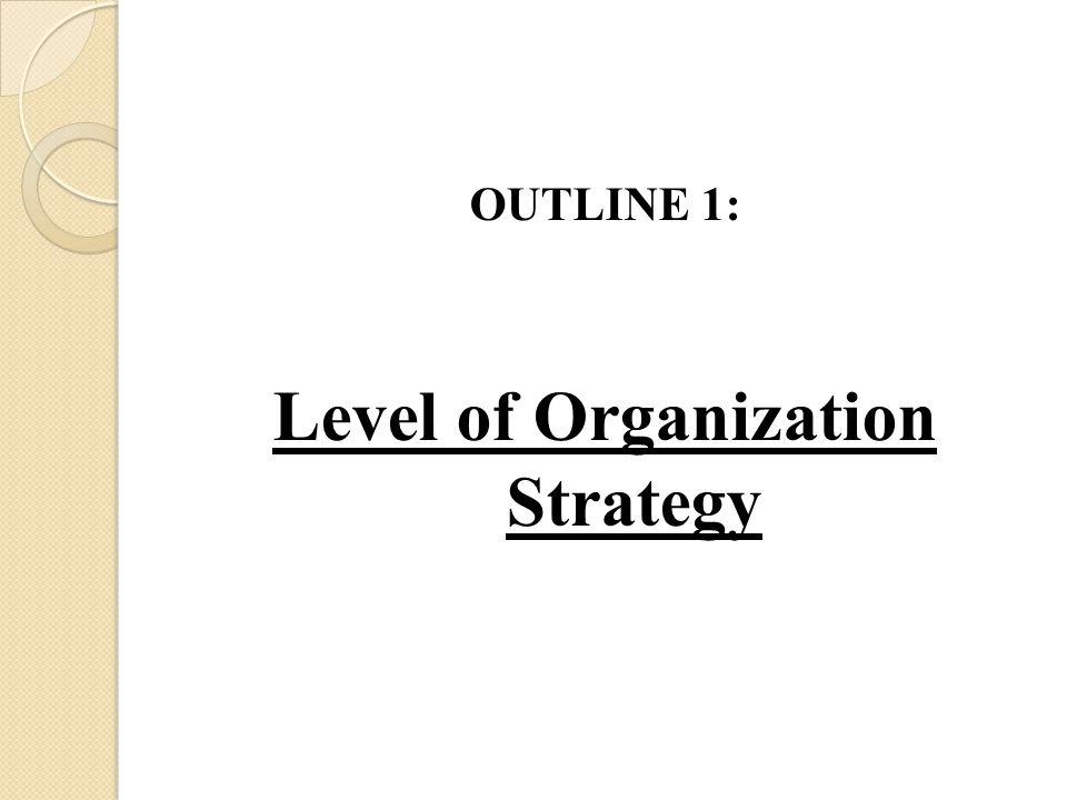Level of Organization Strategy