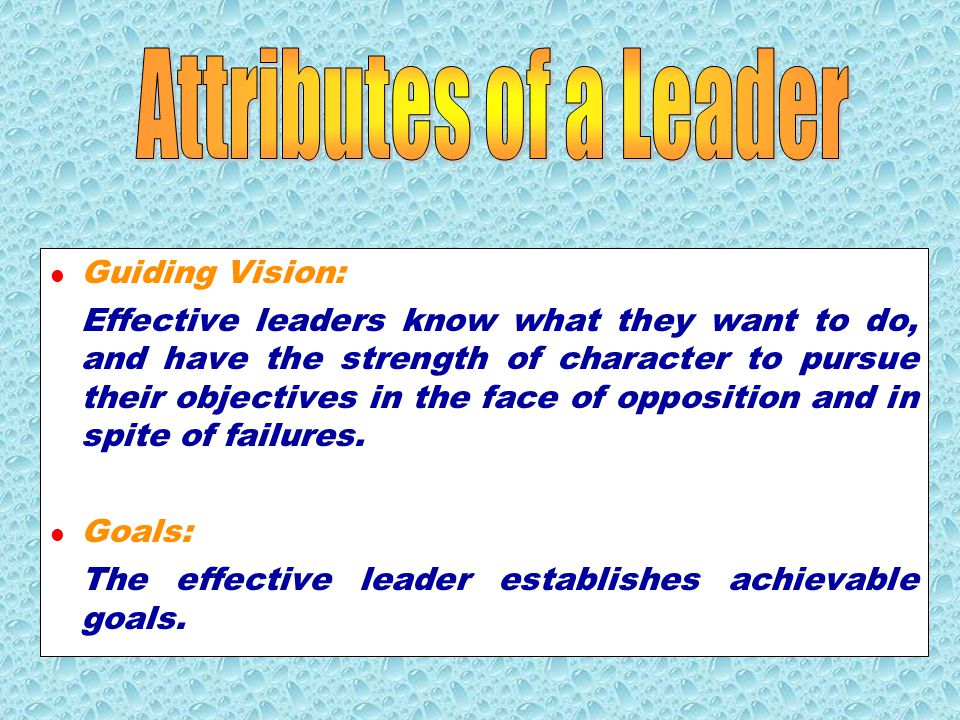 Attributes of a Leader Guiding Vision: