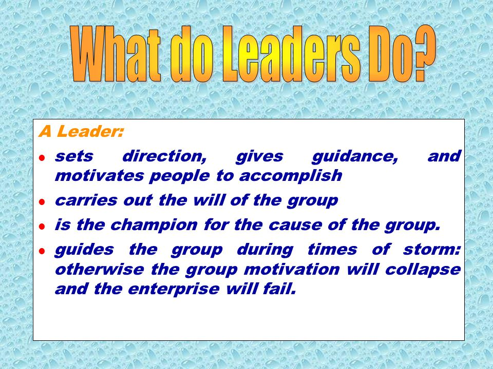 What do Leaders Do A Leader: