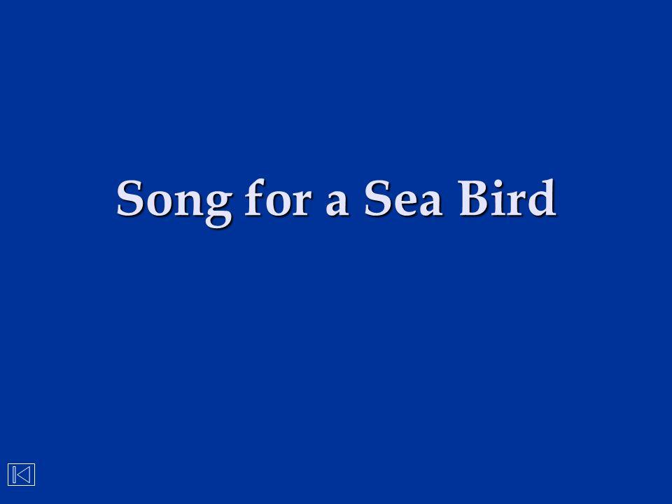Song for a Sea Bird