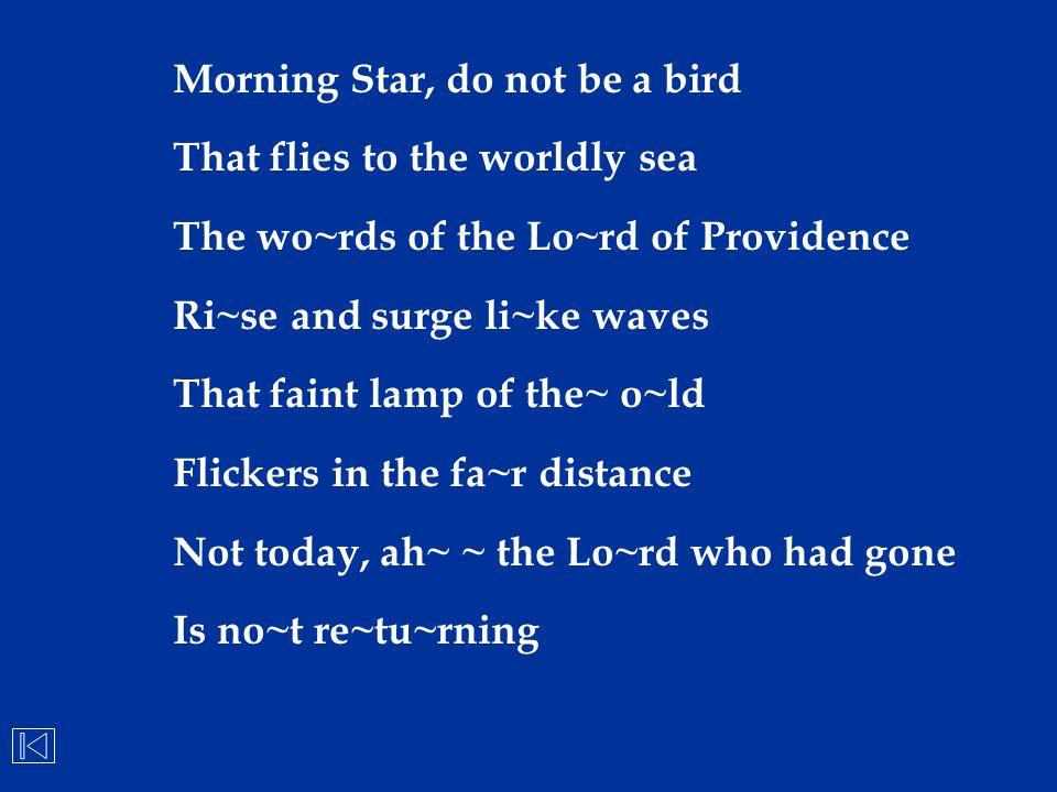 Morning Star, do not be a bird