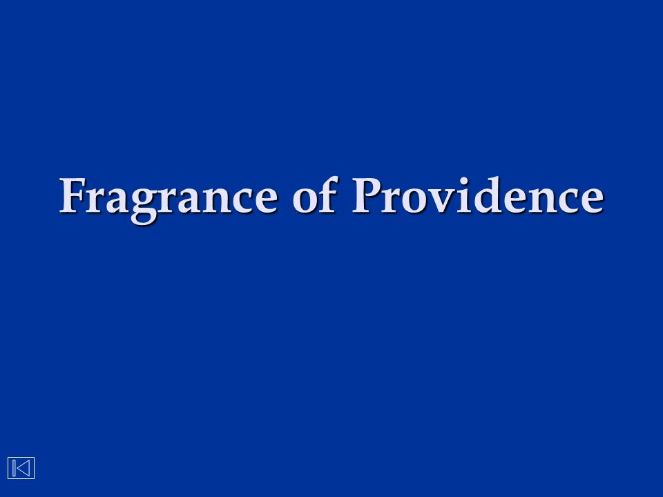 Fragrance of Providence