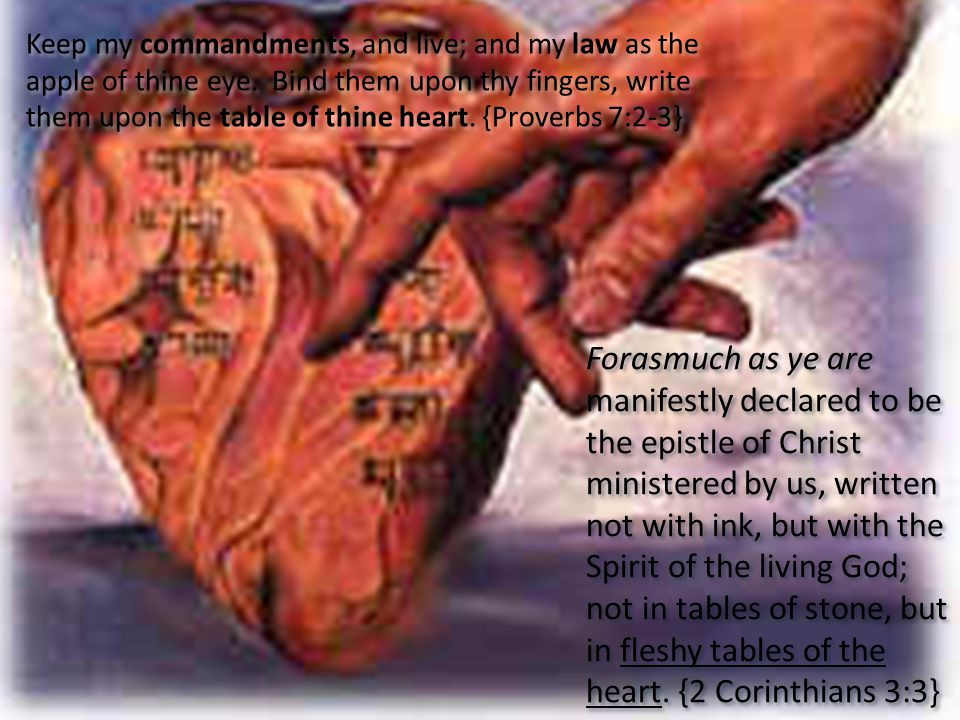 Keep my commandments, and live; and my law as the apple of thine eye