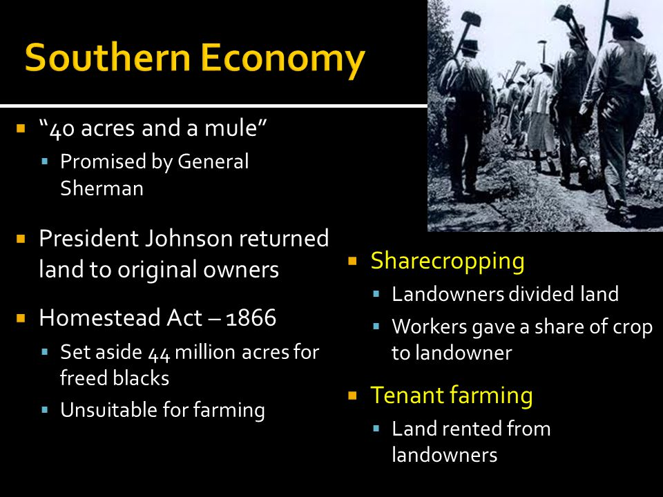 Southern Economy 40 acres and a mule