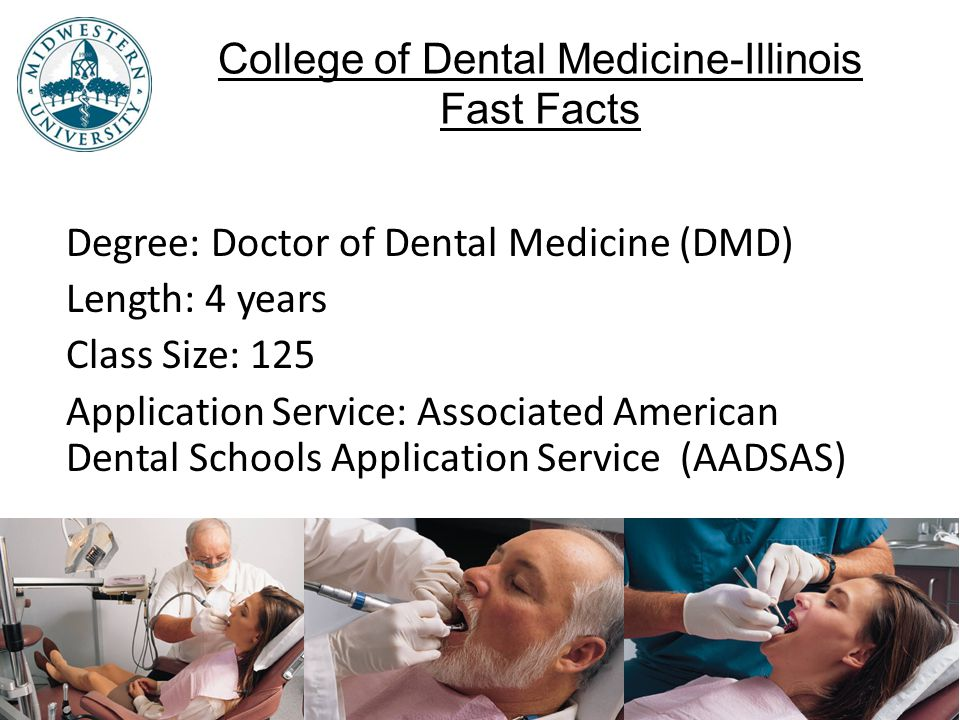 College of Dental Medicine-Illinois Fast Facts